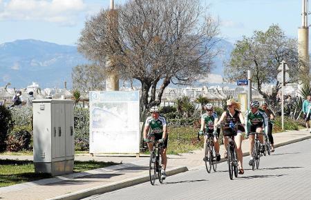Beliebt sind die Gegenden um die Playa de Palma, Muro und Alcúdia.