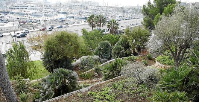 Die Nazareth-Gärten sind eine grüne Lunge mitten in der Stadt.