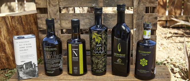 Bio Olivenöl zum Kennenlernen: Sechser-Pack mit Anleitung zur Verkostung.