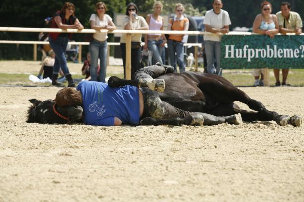"""Kult unter Pferdefreunden: Uwe Jourdain auf Kuschelkurs mit seinem Pferd """"Massai"""" auf einer Pferde-Show."""