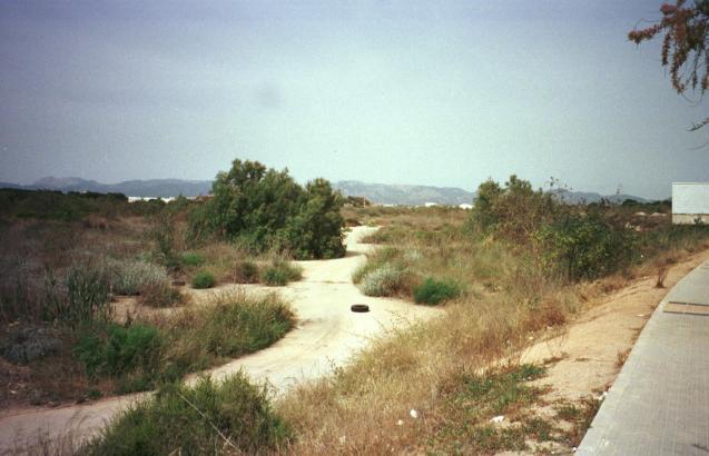 Feuchtgebiet Ses Fontanelles an der Playa de Palma.