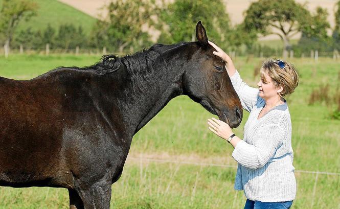 Uta Devone bei der Arbeit mit einem Pferd: Sie sagt, sie kommuniziere über Telepathie mit Tieren.