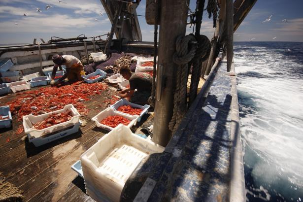 Fischerei auf hoher See in balearischen Gewässern.