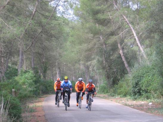 Die Strecke zum Kloster Lluc gehört zu den beliebtesten unter den Radfahren.