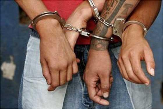 Zwölf Personen hat Mallorcas Polizei in den ersten Monaten des Jahres wegen Versicherungsbetruges festgenommen.