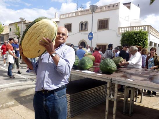 Tomeu Morlà mit seiner Sieger-Melone: 20,48 Kilo.