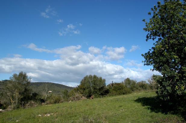 Und so blau wie auf dem Foto soll der Himmel an diesem Wochenende strahlen.