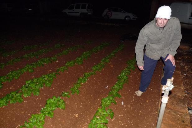 Nachtwache auf dem Kartoffelacker bei Sa Pobla.