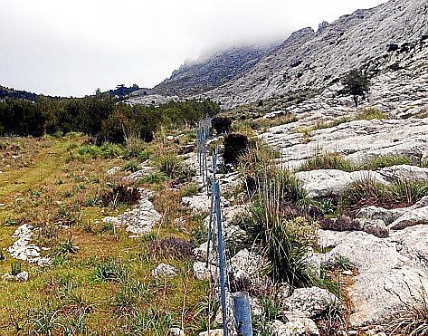 Zäune schützen das Gelände vor verwilderten Ziegen.