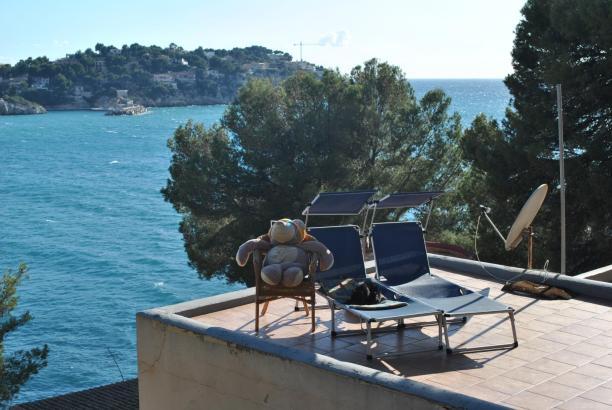 Wärmende Sonnenstrahlen: Teddybär und Katze dösen an der Bucht von Santa Ponça.