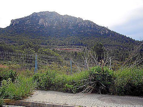 Die Hotelanlage soll am Canyamel-Berg entstehen.