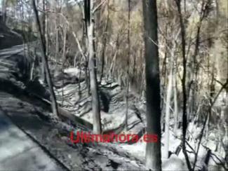 Estellencs nach dem Waldbrand