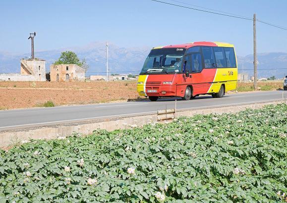 Die Balearen-Regierung hat in den vergangenen Jahren mehrere wenig nachgefragte Buslinien eingestellt.