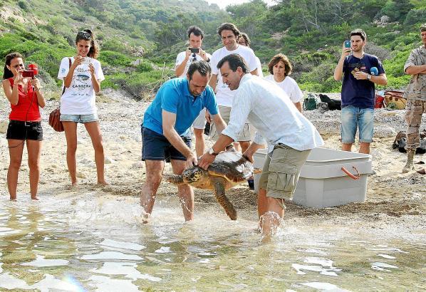 Ministerpräsident José Ramón Bauzá (l.) und Umweltminister Gabriel Company ließen die beiden Schildkröten frei.