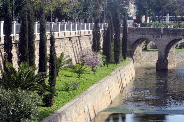 Die Gartenanlagen am Ufer des Sa-Riera-Flusses in Palma, vor 20 Jahren gepflanzt, sind ein grüne Augenfreude im Stadtbild.