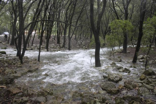 Mallorcas Wasservorkommen sind im Boden gespeichert. Nur nach anhaltenden Regenfällen strömt das Nass etwa aus der Quelle Ses Fo