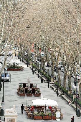 """Der Paseo del Borne in Palma - oder katalanisch Passeig des Born führt vom Brunnen an der """"Plaça de la Reina"""" direkt an die """"Pla"""