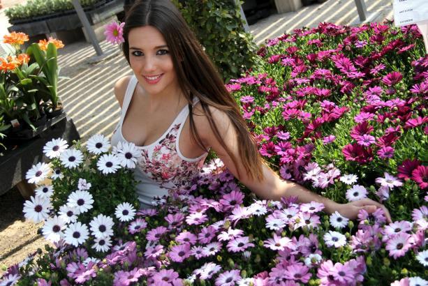 """Natalia Ferrer, die Miss Tourismus der Balearen, ist für die spanische Tageszeitung """"Ultima Hora"""" das Blumenmädchen, das den Frü"""