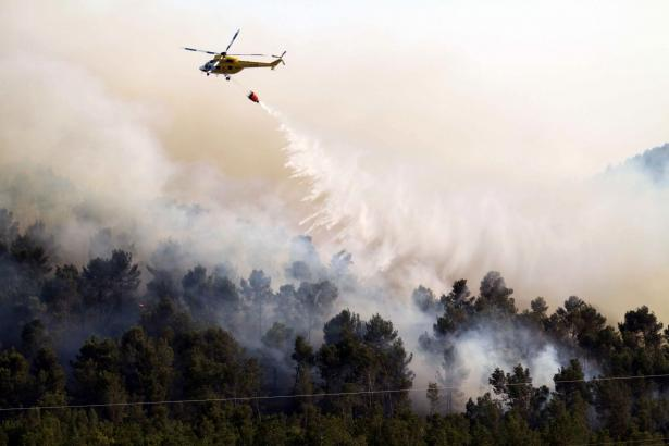 Beim schwersten der Brände wurden allein in Bendinat 128 Hektar Waldfläche zerstört.
