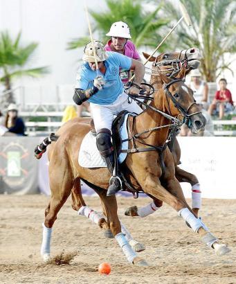 Langfristig soll Mallorca ein Zentrum des Polosports werden, so die Pläne.