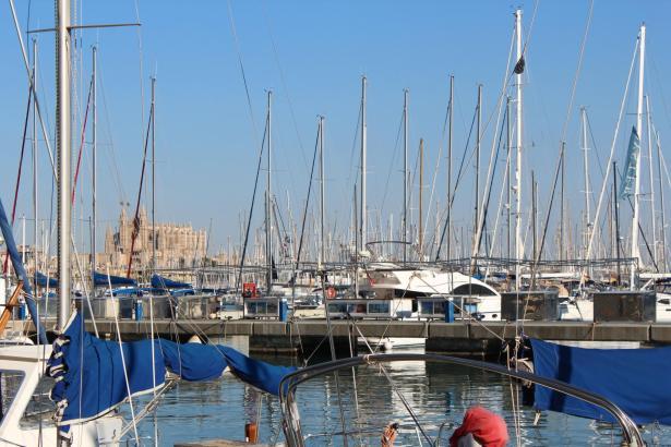 Bis einschließlich Gründonnerstag soll sich Mallorca von seiner sonnigen Seite zeigen.