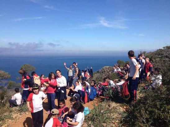 Die Grundschüler in der Cala en Basset.