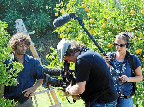 Kameramann Joachim Krug und seine Assistentin drehen eine Nahaufnahme der Orangenbäume.