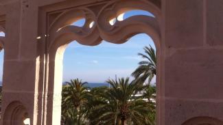 Besuch auf dem Dach der Lonja