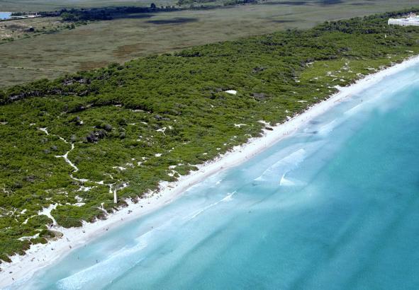 Einer der beliebtesten Strände Spaniens: Die Playa de Muro, aus der Möwenperspektive.