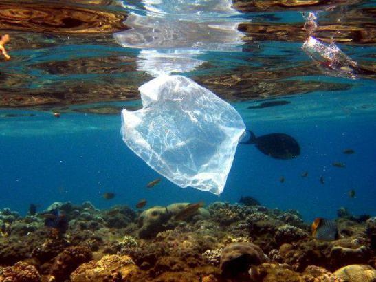 Plastikmüll im Meer vor Mallorca.