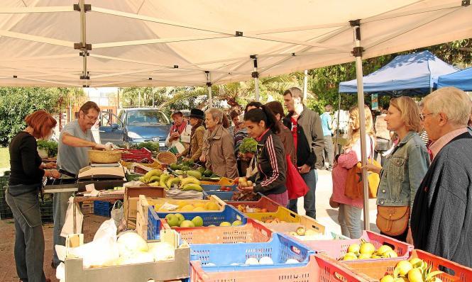 Zu den Marktzeiten zwischen 9 und 14 Uhr herrscht auf der Plaza de los Patines eigentlich immer reger Betrieb an den Ständen.