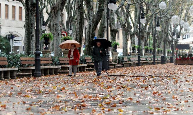 Der Novemer ging, der Dezember kam – mit Regen und starkem Wind.