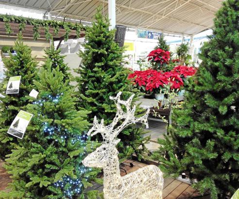 """""""Darf's noch ein leuchtendes Rentier sein?"""" Die Plastikbäume in den Baumärkten sehen zum Teil täuschend echt aus."""