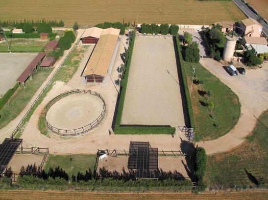 Die drei Hektar große Ranch in S'Aranjassa wird seit September von umstrittenen Mietern bewohnt.