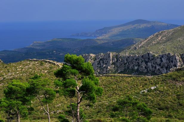 Das Naturschutz- und Wandergebiet Parc de Llevant im Norden von Mallorca.