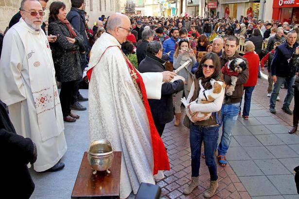 Gehören ebenfalls zu Sant Antoni: Tiersegnungen, wie hier in Palma.