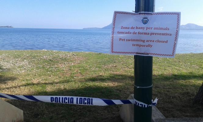 In der Vergangenheit musste der Llenaire-Strand schon einmal gesperrt werden.