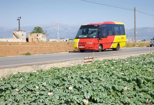 Mallorcas Überlandbusse fahren kreuz und quer über die Insel.