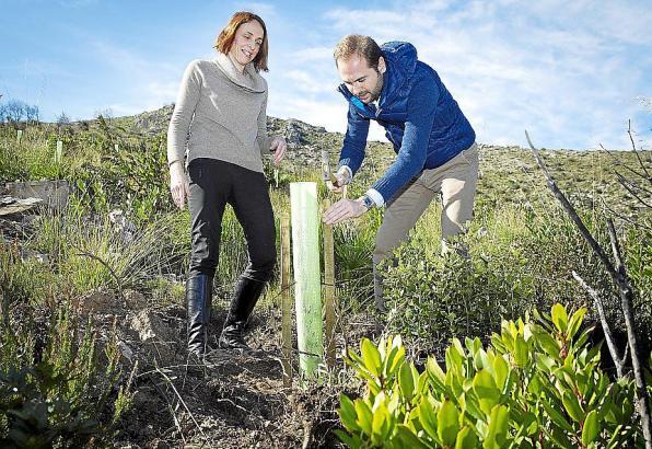 Neus Lliteras vom Umweltministerium und Eduardo Maynau von Red Eléctrica setzen symbolisch einen Sprössling.