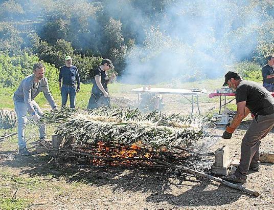 Die Triebe werden auf Rebholz gegart. Foto: Lydia E. Larrey