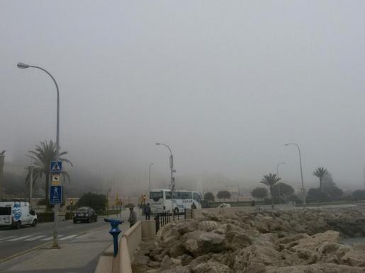 Im Nebel ist die Kathedrale von Palma nur zu erahnen.