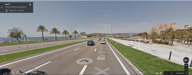 Wer vom Flughafen kommend auf der Meeres-Autobahn Richtung Palma fährt, wird sowohl der Kathedrale ansichtig als auch der Palmen