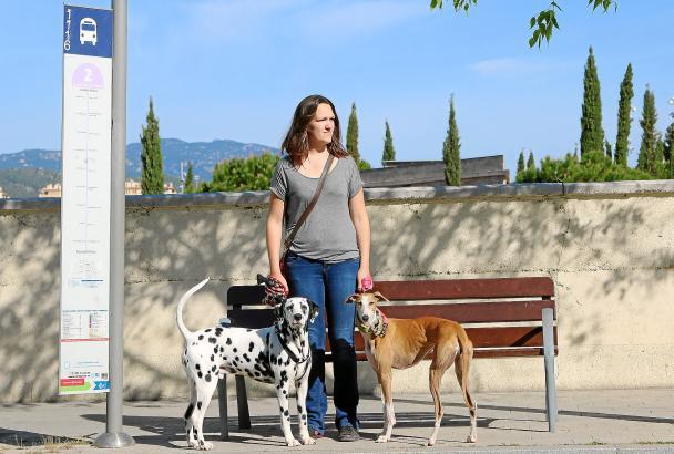 Wartende Hunde samt Frauchen an der Linie 2 in Palma: Ihnen ist der Zustieg erlaubt, allerdings fehlt noch der Maulkorb.
