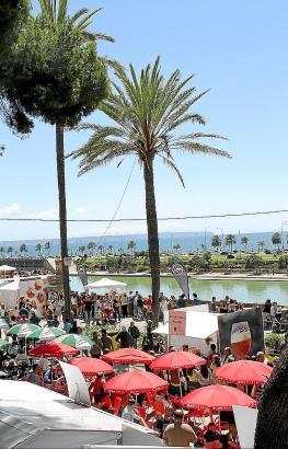 Anfangs lief die Beer Palma auf der Stadtmauer, mittlerweile wurde der Standort nach unten in den Parc de Mar verlegt.
