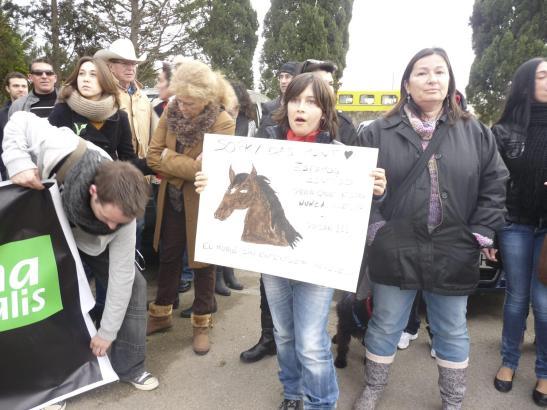 Demonstrationen: Der Tod des Pferdes hatte 2012 für Empörung gesorgt.