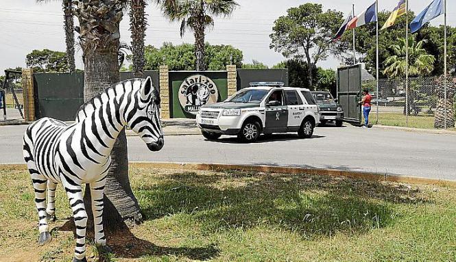 Der Safari Zoo auf Mallorca erhält derzeit vor allem Polizeibesuch.