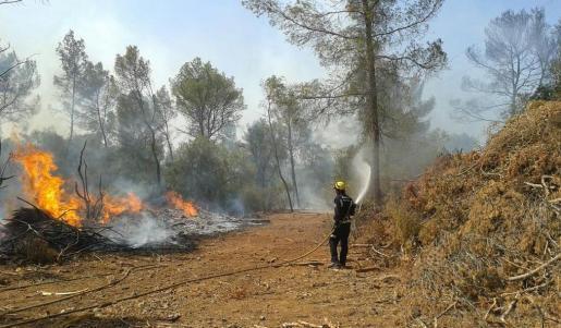 Der Waldbrand bei Llubí war gegen 17 Uhr unter Kontrolle.