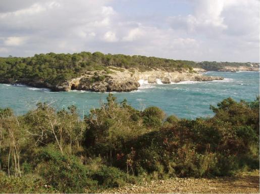 An der beliebten Cala Mondragó in der Gemeinde Santanyí wurde der Täter geschnappt.