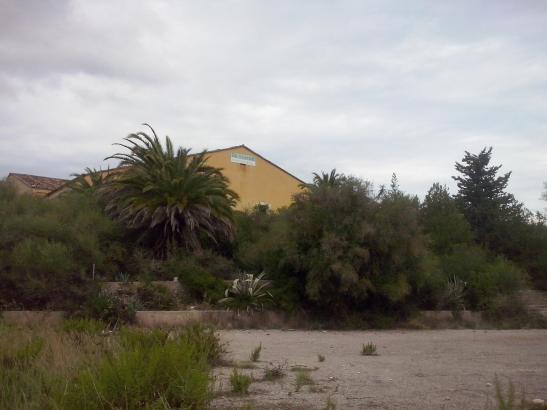 Das Industriegebiet in Artà wurde vor zehn Jahren eingeweiht und existiert seitdem eher schlecht als recht.