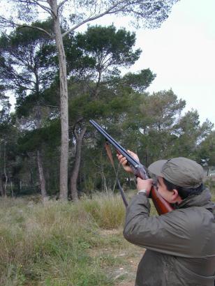 Auf Mallorca gibt es ganz besonders viele Jäger. Jetzt hat die Niederjagd-Saison begonnen, weshalb es überall auf der Insel knal